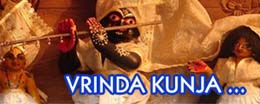 vrinda kunja tour inbound ecology vrindavan dham india ecología turismo spiritual espiritual