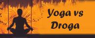 ypga droga conferencia lecture swami paramadvati vrinda
